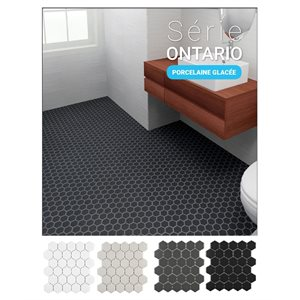 Série Ontario * Hexagone 2x2 Lustré